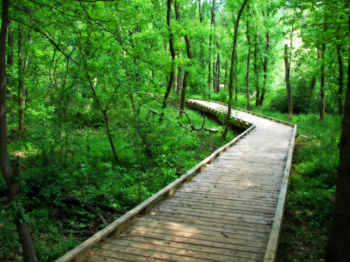 Nature Parks For Kids Greenville Sc