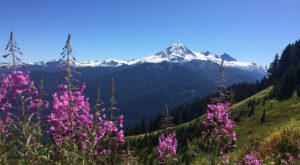 The 9 Trails In Washington You Absolutely Have To Hike This Summer