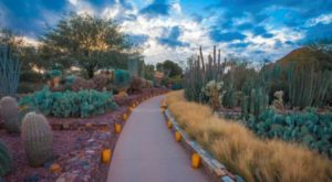 5 Enchanting Botanical Gardens Around The U.S. That Will Blow You Away