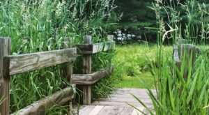 You'll Love Strolling This Enchanting Boardwalk In Rhode Island That's Nowhere Near The Beach