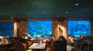 Dining At This Ocean-Themed Restaurant In Florida Will Delight You In Every Way