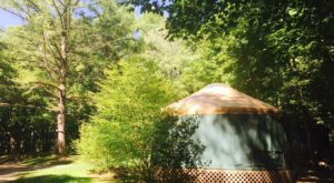 This Massachusetts Park Has A Yurt Village That's Absolutely To Die For