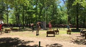 The Adventure Ranch In Oklahoma That's Perfect For A Family Day Trip
