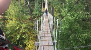 The Treetop Trail That Will Show You A Side Of Wisconsin You've Never Seen Before