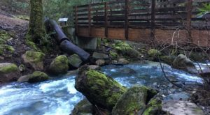 The Magnificent Bridge Trail In Northern California That Will Lead You To A Hidden Waterfall