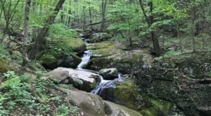 This 3-Mile Hike In Virginia Leads To The Dreamiest Swimming Hole