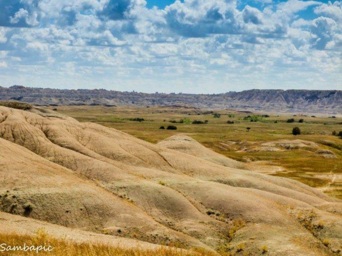 Robert S Prairie Dog Town Is Best Hidden Place To See Wildlife In