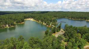 You'll Find One Of America's Largest Campgrounds At This Alabama State Park