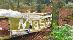The Unique Hike In North Carolina That Leads You To Plane Wreckage From 1978