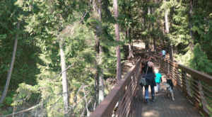 The Magnificent Bridge Trail In Idaho That Will Lead You To A Hidden Waterfall