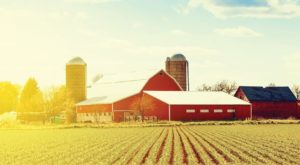 The World's Freshest Jams Are Tucked Away Inside This Hidden Pennsylvania Farm Market