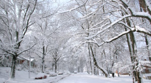 You'll Be Pleased To Hear That Maryland's Upcoming Winter Is Supposed To Be More Mild Than Last Year's