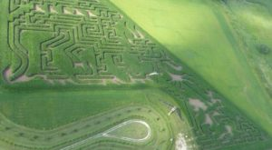 Get Lost In This Awesome 12-Acre Corn Maze In Minnesota This Autumn