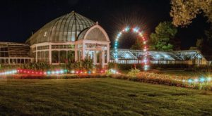The Illuminated Garden Walk In New York You Simply Won't Want To Miss