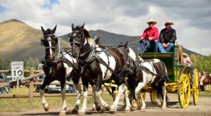 The Entire Family Will Love This Scenic Wagon Ride Through The Idaho Wilderness