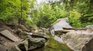 10 Easy Hikes Around Cleveland You'll Want To Knock Off Your Summer Bucket List