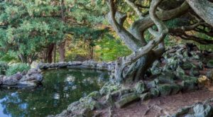 The Secret Garden In New Jersey You're Guaranteed To Love