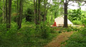 Spend The Night Under A Tepee At This Unique Massachusetts Campground