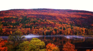 You'll Be Pleased To Hear That Vermont's Fall Foliage Is Predicted To Be Bright And Bold This Year