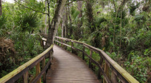 You'll Love The Endless Skies At This Enchanting Park In Florida