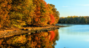 You'll Be Pleased To Hear That Connecticut's Fall Foliage Is Predicted To Be Bright And Bold This Year