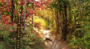 The Awesome Hike That Will Take You To The Most Spectacular Fall Foliage In Idaho