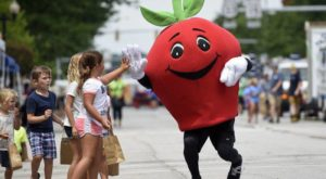 This Fabulous Fall Festival In Indiana Is Home To A 7-Foot Apple Pie You Have To See To Believe