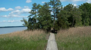 The Unique Boardwalk Hike In Virginia Everyone In Your Family Will Love