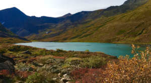 This Delicious Blueberry Hike In Alaska Will Wind Down Your Summer In All The Right Ways