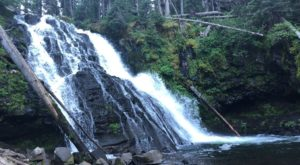 Your Kids Will Love This Easy 2-Mile Waterfall Hike Right Here In Montana
