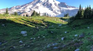 These 9 Stunning Washington Trails Have The Best Mountain Views