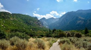 The Canyon Waterfall Hike In Utah That Will Overwhelm You With Natural Beauty