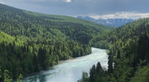 The Underrated River Trail In Alaska You'll Want To Hike Over And Over Again