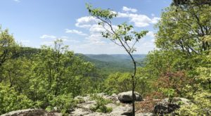 Just About Everyone Can Hike To The Top Of This Gorgeous Arkansas Mountain
