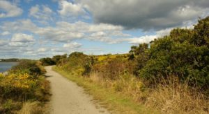 9 Low-Key Hikes In Rhode Island With Amazing Payoffs