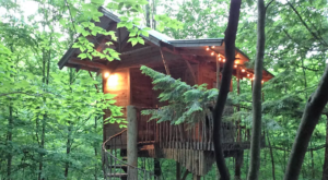 This Treehouse Resort In New York May Be Your New Favorite Location