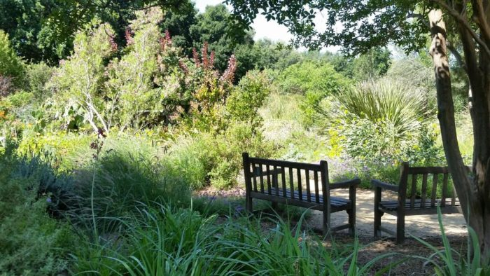 This Serene Hummingbird Garden In Northern California Is Beautiful