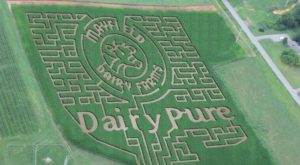 Get Lost In This Awesome 10-Acre Corn Maze In Tennessee This Autumn