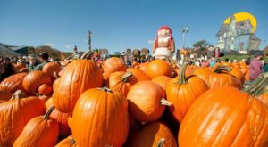 The Pennsylvania Orchard That Transforms Into A Halloween Wonderland Each Year