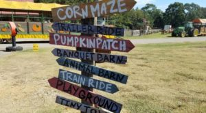 Nothing Says Fall Is Here More Than A Visit To Mississippi's Charming Pumpkin Farm