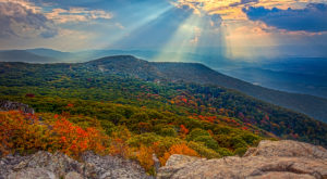 You'll Be Happy To Hear That Virginia's Fall Foliage Is Expected To Be Bright And Bold This Year