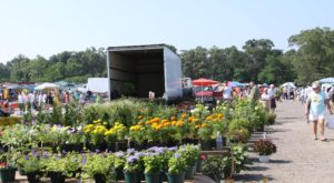 You Could Spend Hours At This Giant Outdoor Marketplace In Maryland