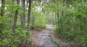 One Of America's Most Haunted Trails Is Right Here In North Carolina And You Won't Want To Hike It Alone