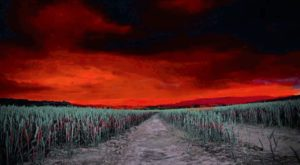 This Horrifying Haunted Corn Maze In Rhode Island Is One Place You Don't Want To Get Lost