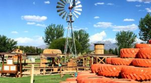 This Spectacular Corn Maze And Pumpkin Patch In New Mexico Will Kick Off Your Fall Perfectly