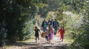 The Enchanting Halloween Hike In Virginia Your Whole Family Will Love