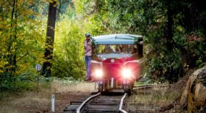 This Railbus Ride Through The Forest In Northern California Is A Little-Known Adventure