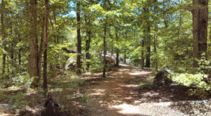 The Historic Park In South Carolina That Was A Deadly Battleground During The Revolutionary War