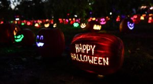 There's A Glowing Pumpkin Trail Coming To Virginia And It'll Make Your Fall Magical