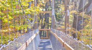 The Awesome Hike That Will Take You To The Most Spectacular Fall Foliage In Cleveland
